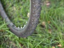Obrazek frontowy rowerowego koła zbliżenie z przetartą opony płycizną dof fotografia stock