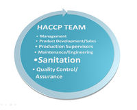 Obrazek jest przedstawieniem członek HACCP drużyny styl 2 Fotografia Royalty Free