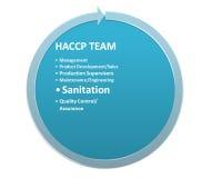 Obrazek jest przedstawieniem członek HACCP drużyny styl 2 Obrazy Royalty Free