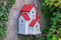 Obrazek malujący ptaka dom na ścianie z zielonymi liśćmi obraz royalty free