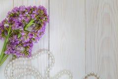 Obrazek z różowym kwiatem Zdjęcia Royalty Free