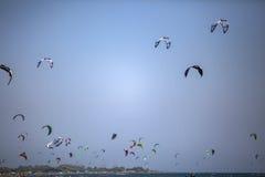 Obrazki Long Beach w Montenegro spotkaniu kitesurfers 03- Obraz Royalty Free