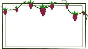 Obrazkowi winogrona Obrazy Royalty Free