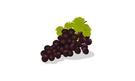 Obrazkowi winogrona Zdjęcia Stock