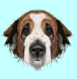Obrazkowy portret Moskwa organu nadzorczego pies royalty ilustracja