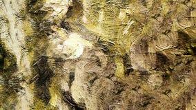 Obrazu olejnego abstrakta brushstrokes fotografia stock