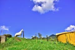 Obrazuje o Brazylia Krajobraz zdjęcia royalty free