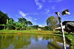 Obrazuje o Brazylia Krajobraz fotografia royalty free