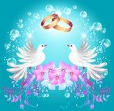 Obrączki ślubne i dwa gołąbki Zdjęcia Royalty Free