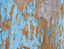 Obrezaushue paint on wooden wall. Remnants of blue paint on a wooden wall Stock Photos