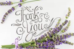 Obrigado cardar com flores da alfazema foto de stock