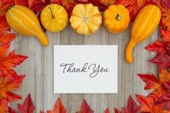 Obrigado mensagem para o outono imagens de stock