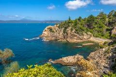 Obrotowy Parkowy punkt obserwacyjny w Eden, Australia obraz royalty free