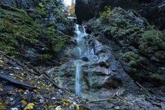 Obrovsky vodopad, via Ferrata HZS Kysel, Slovensky raj, Slovakien royaltyfri foto