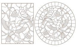 Obrysowywa set z ilustracjami witraż Windows z gilami siedzi na gałąź śnieżysty halny popiół, d royalty ilustracja