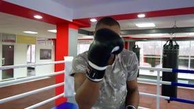Obsługuje boks w pierścionku, styl życia sport zdjęcie wideo