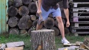 Obsługuje ciapania drewno z cioską, zwolnione tempo krótkopęd zdjęcie wideo