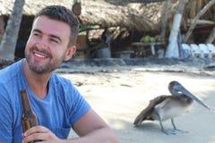 Obsługuje cieszyć się piwo blisko do dzikiego pelikana zdjęcia royalty free
