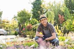Obsługuje patrzeć oddalony podczas gdy uprawiający ogródek przy rośliny pepinierą Obraz Royalty Free