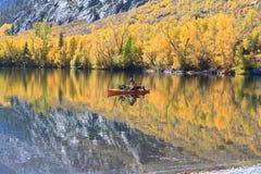 Obsługuje połów od małej łódki w jeziorze z brzeg złota osika Zdjęcia Royalty Free