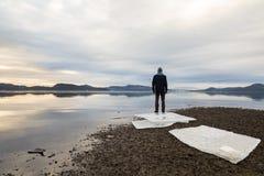 Obsługuje pozycję, lodowych floes na ciemnym piasku, spokojnego morze, mgłę i mgłę przy plażą, Hamresanden, Kristiansand, Norwegi Fotografia Royalty Free
