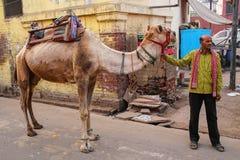 Obsługuje pozycję z wielbłądem w Taj Ganj sąsiedztwie Agra, Utta Obraz Stock