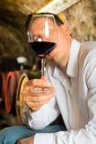Obsługuje probierczego wino w tło baryłkach Zdjęcie Royalty Free