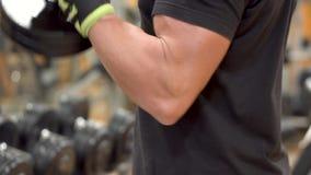 Obsługuje robić Ups, trzyma ciężkich dumbbells w rękach, trening dla bicepsów mięśni zbiory