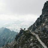 Obsługuje sylwetkę na wierzchołku góra zdjęcie royalty free