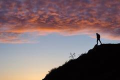 Obsługuje sylwetkę na wzgórzu, Wiktoria, BC zdjęcia royalty free