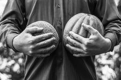 obsługuje trzymać dojrzałych melony różne rozmaitość, czarny i biały fotografia zdjęcie royalty free