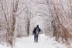 Obsługuje wycieczkować w zimie na śnieżnym śladzie fotografia stock