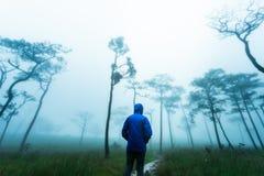Obsługuje badacza las, Phu Soja Dao, Tajlandia Zdjęcie Stock