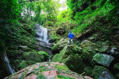 Obsługuje badacza las, Phu Soja Dao, Tajlandia Obraz Royalty Free