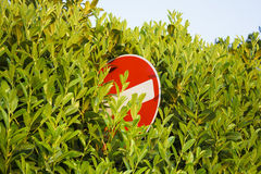 An obscured do not enter sign. A do not enter sign half hidden by leaves royalty free stock photo