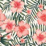 Obscuridade cor-de-rosa das folhas de palmeira do hibiscus - teste padrão verde ilustração royalty free