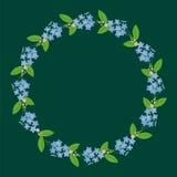 Obscuridade floral da grinalda da beira da decoração da planta dos miosótis do Myosotis Ilustração Royalty Free