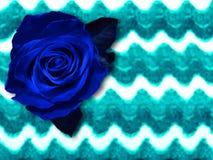 Obscuridade - o azul aumentou em um fundo com listras onduladas imagem fotos de stock royalty free
