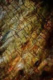 Obscurité en bois de couleur de fond de panneau de conseil Image stock
