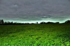 Obscurité verte image stock