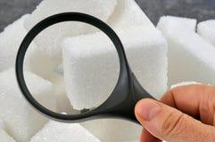 Observação do açúcar com uma lupa imagem de stock