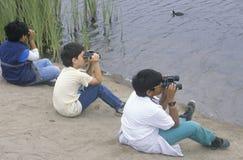 observación de pájaros de 3 muchachos Imagen de archivo libre de regalías