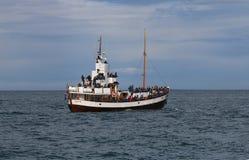 Observación de la ballena Imagen de archivo