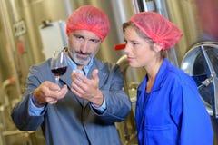 Observando a claridade do vinho foto de stock royalty free