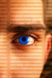 Observateur photos libres de droits