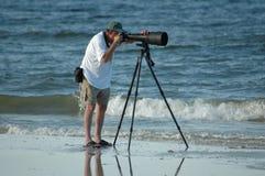 Observateur d'oiseau Photographie stock libre de droits