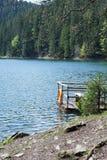 Observatiedek met reddingsboei op een bergmeer Synevir en naaldbomen stock afbeelding