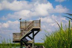 Observation Birding Tower. An Observation tower along a boardwalk for birding in Port Aransas, Texas Royalty Free Stock Image