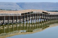Observation d'oiseaux sur le lac Hula Photographie stock libre de droits