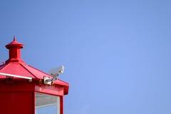 Observation de caméra de sécurité Image libre de droits